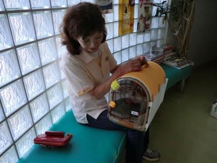 家政婦でペットの通院介助!3