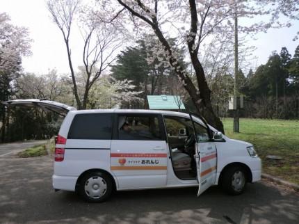 介護タクシーでお花見2